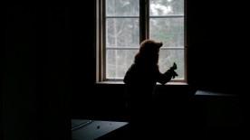 genom dagen still fönster